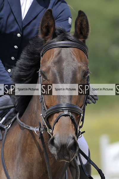 Class 1. British Showjumping seniors. Brook Farm Training Centre. Essex. 09/06/2018. ~ MANDATORY Credit Garry Bowden/Sportinpictures - NO UNAUTHORISED USE - 07837 394578