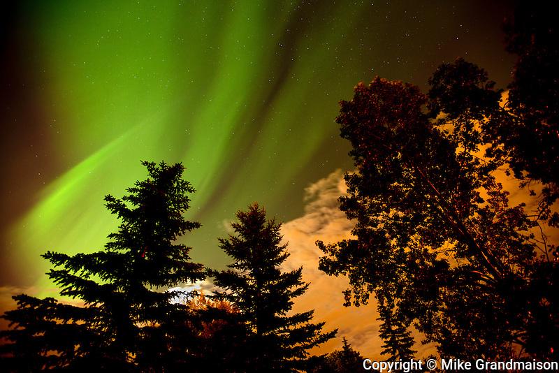 Northern lights or aurora borealis in Southdale neighbourhood<br /> Winnipeg<br /> Manitoba<br /> Canada