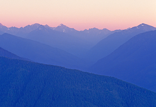 alpenglow over Olympic Mountains at Hurricane Ridge, Olympic National Park, Washington State