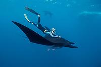 Manta ray and freediver, Isla San Benedicto, Manta birostris, Mexico, East Pacific Ocean