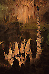 Totem Pole, Carlsbad Caverns National Park, New Mexico