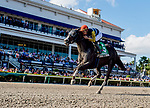January 25, 2020: Phat Man, #5, ridden by jockey Irad Ortiz, Jr., wins the Fred W. Hooper Stakes during the Pegasus World Cup Invitational at Gulfstream Park Race Track in Hallandale Beach, Florida. Chris Crestik/Eclipse Sportswire/CSM