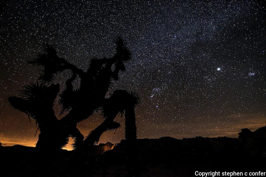 desert starscape