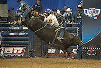 Cody Rodeo Tyler attempts 18 Curious George of Soggy Hill Cattle Co. during the PBR Blue Def Tour event in Hampton, VA - 3.5.2016. Photo by Christopher Thompson