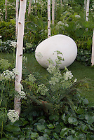 Betula birch trees in white spring garden with egglike white ornament, Astrantia in conceptual garden by Ivan Tucker, planting under trees, Asarum, lawn grass