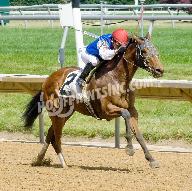Yesterday's Story winning at Delaware Park on 6/13/12