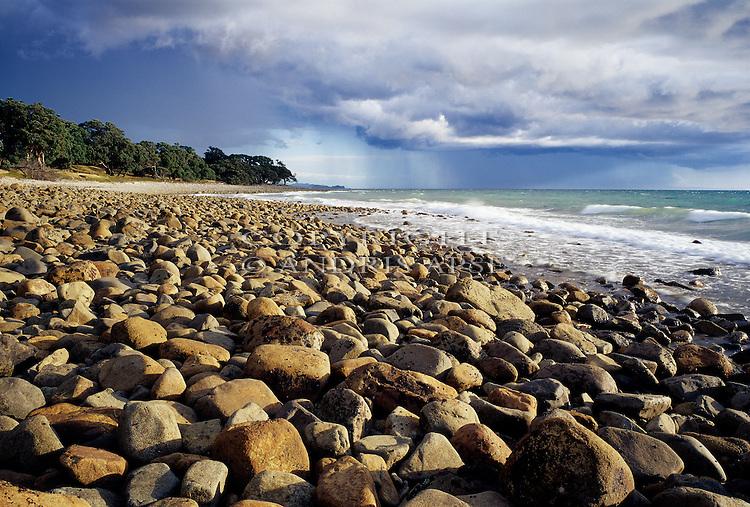 Rocky coastline on the Coromandel Peninsula. New Zealand.