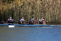 Crew: 99   Op 4+ BAND-1   Bristol, University of, Boat Club   UBR-STROUD<br /> <br /> Wallingford Head 2017<br /> <br /> To purchase this photo, or to see pricing information for Prints and Downloads, click the blue 'Add to Cart' button at the top-right of the page.