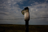 Boot on a fencepost near Russell Springs, KS...Larry and Bette Haverfield on their ranch near the defunct town of Russell Springs, Kansas.  The Haverfields have been embroiled in a long-running war over the presence of prairie dogs on their ranch.  The Haverfields assert, correctly, that the prairie dogs contribute to increased biodiversity on their property, enabling them to graze their cattle in a fashion that mimics the movement and grazing patterns of pre-settlement buffalo through their range.  The county, particularly county commissioner Carl Ulrich, contend that prairie dogs are a nuisance and should be eradicated.  Many of the haverfields' neighbors feel the same way.  In recent years, the county has exterminated prairie dogs from the Haverfield property using a number of methods, including gas and poison, before sending the Haverfields the bill.  The Haverfields have discovered a number of 'secondary kill' animals, carcasses of birds and mammals that have eaten the poisoned prairie dogs and subsequently been killed themselves.  Complicating matters, the US Fish and Wildlife Service has recently re-introduced endangered black footed ferrets onto the land, a natural predator of the prairie dogs.  This move has heightened tensions between neighbors and led to a series of legal maneuvers on both sides to control the spread of the prairie dogs as well as the ferrets.