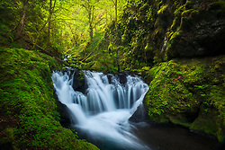 Lush cascades and greens in the heart of the Columbia Gorge.