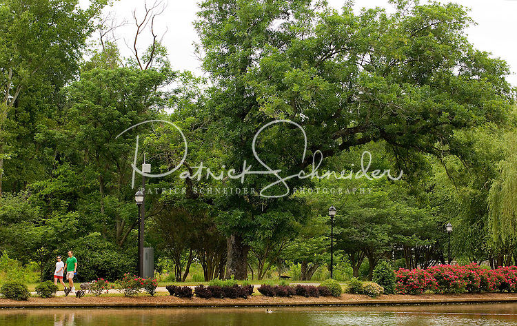 A couple strolls through Freedom Park in the Myers Park neighborhood in Charlotte, NC. Myers Park is one of the premier neighborhoods in North America and known for its large canopy of trees.