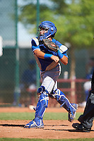 Kansas City Royals catcher Freddy Fermin (29) during an Instructional League game against the Cleveland Indians on October 11, 2016 at the Cleveland Indians Player Development Complex in Goodyear, Arizona.  (Mike Janes/Four Seam Images)