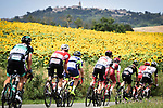 The breakaway group pass by sunflower fields Stage 16 of the 2018 Tour de France running 218km from Carcassonne to Bagneres-de-Luchon, France. 24th July 2018. <br /> Picture: ASO/Pauline Ballet | Cyclefile<br /> All photos usage must carry mandatory copyright credit (© Cyclefile | ASO/Pauline Ballet)