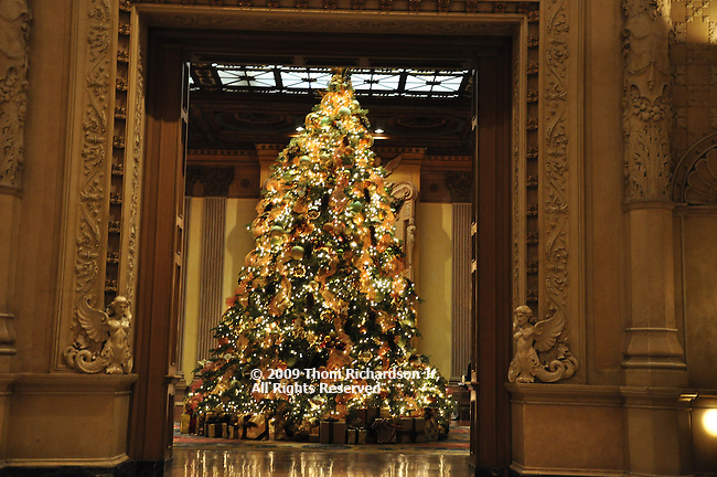 Christmas Decorations, Poinsettia
