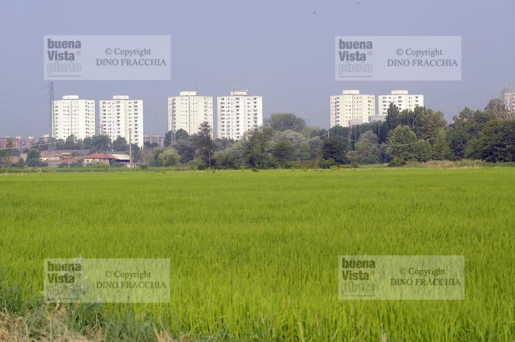 - Milano, Parco Agricolo Sud, sullo sfondo quartieri residenziali di periferia, le Torri Bianche di Rozzano<br /> <br /> - Milan Agricultural Park South, at background suburban   residential districts, the White Towers of Rozzano