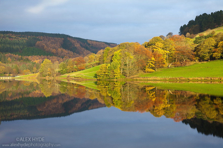 Ladybower Reservoir showing mirror reflections on a calm autumn morning. Peak District National Park, Derbyshire, UK. November.