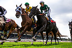 MAY 27: Vasilika with Flavien Prat races next to Rymska with Irad Ortiz Jr. in the Gamely Stakes at Santa Anita Park in Arcadia, California on May 27, 2019. Evers/Eclipse Sportswire/CSM