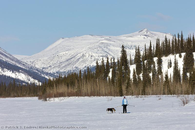 Skijoring along the Koyukuk River, Brooks Range, Alaska.