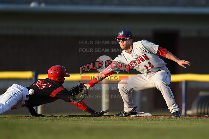Auburn Doubledays first baseman Jose Marmolejos-Diaz (14) waits for a pick off attempt throw as Javier Lopez (22) dives back to first during a game against the Batavia Muckdogs on August 27, 2014 at Dwyer Stadium in Batavia, New York.  Auburn defeated Batavia 6-4.  (Mike Janes/Four Seam Images)