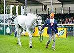 30th August 2017. Andrew Hoy (AUS) riding The Blue Frontier during the First Horse Inspection of the 2017 Burghley Horse Trials, Stamford, United Kingdom. Jonathan Clarke/JPC Images