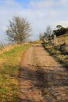 Roman road chalk landscape, Morgan's Hill, near Calne, Wiltshire, England, UK