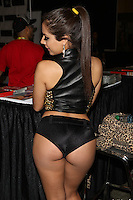 Jynx Maze at Exxxotica, Broward County Convention Center, Fort Lauderdale, FL, Friday May 2, 2014.