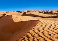 The Sahara desert sand dunes of Erg Oriental near the oasis of Ksar Ghilane, Tunisia, Africa