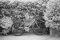 Infra Red Black & White bicycle, Pienza, Italy