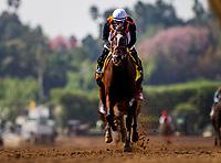 09-30-17 Zenyatta Stakes Santa Anita