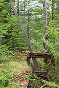 An abandoned harp switch stand along the old Beebe River Railroad (1917-1942) in the Sandwich Range Wilderness of Waterville Valley, New Hampshire. This harp switch is a protected artifact of the logging era, and the removal of historical artifacts from federal lands without a permit is a violation of federal law.