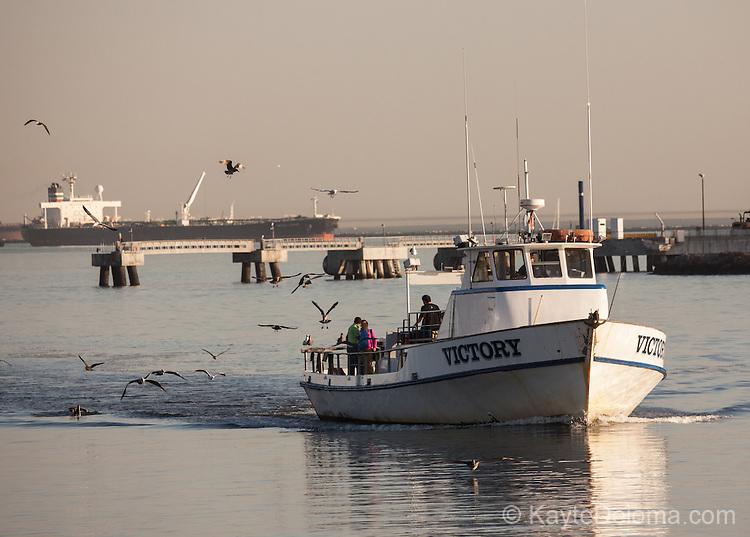 Long beach kayte deioma travel photography for Long beach sport fishing