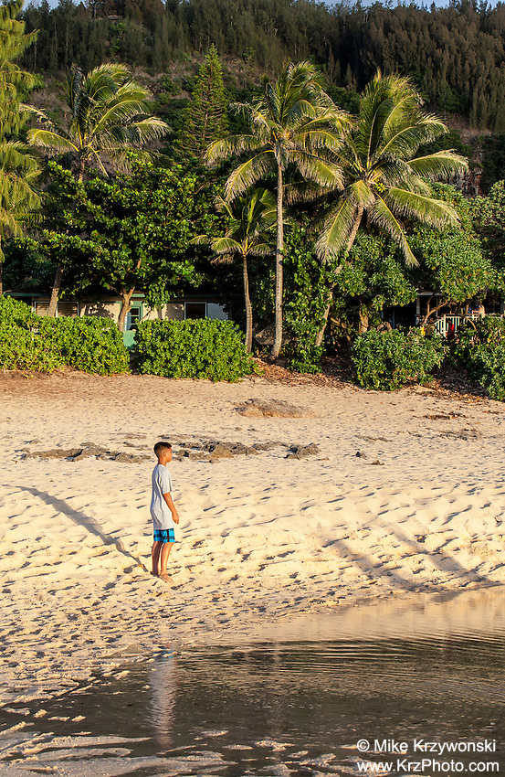 Boy standing on the beach near tide pool on the North Shore, Oahu, Hawaii