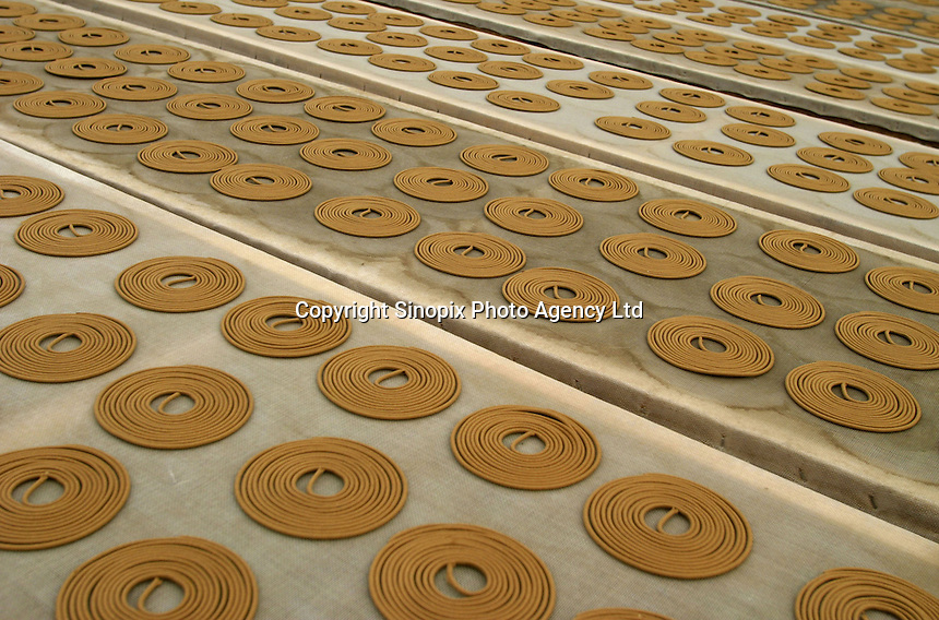 Incense coils dry on racks at the Meizhengxiang Incense Factory near Xiamen, Fujian Province, China. As religous life increasingly becomes an important part of China, businesses related to religion such as Buddhism and Daoism have flourished. The factories have seen its sales quadruple since its establishment in 1996, reaching euro 5 million in 2003. The factory now employs over 200 workers, mostly migrants from Sichuan and Jiangxi Province..17-MAR-04
