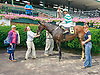 Duke of Luke winning at Delaware Park on 7/15/15