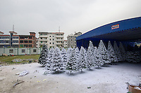 November 28, 2015, Yiwu China - Christmas trees sprayed with artificial snow  dry outisde the Sinte An Christmas tree factory. The factor produces a variety of artificial trees for global export throughout the year.Photo by Dave Tacon / Sinopix