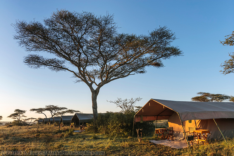 Luxury mobile tented camp, Serengeti National Park, Tanzania, East Africa