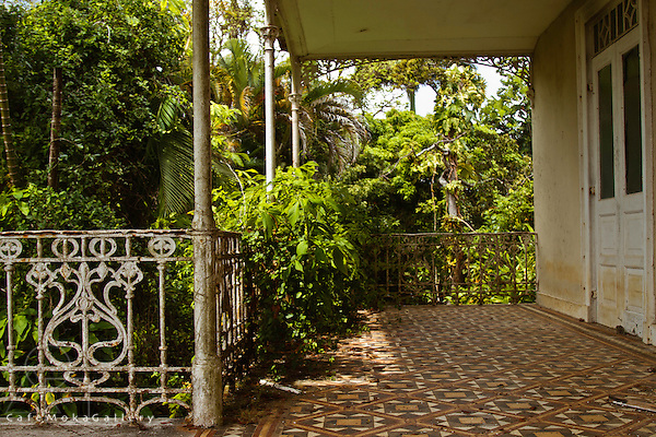 Barbados - Plantation house, Wakefield Hall, now decaying - verandah with tiled floor and wrought iron and the garden beginning to invade the house