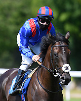 Never Say When ridden by Richard Kingscote goes down to the start of The AJN Steelstock Kentford British EBF Novice Stakes    during Horse Racing at Salisbury Racecourse on 9th August 2020
