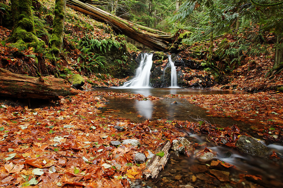 Cascade Creek flowing over Rustic Falls, Moran State Park, Orcas Island, San Juan County, Washington, USA