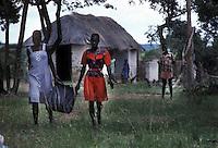 ZIMBABWE - Zona rurale di Raffingora.ZIMBABWE - Raffingora rural area.