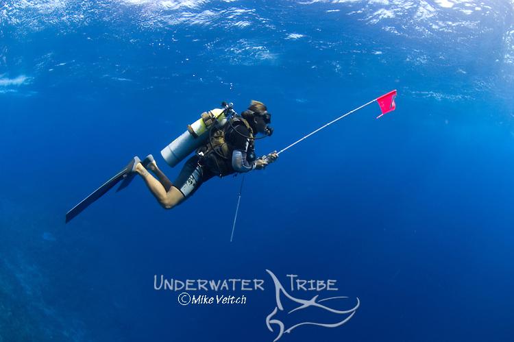 Divers in shallow clear water, Layang Layang atoll, Sabah, Malaysia, South China Sea, Pacific Ocean