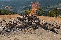 in provincia di Forlì Cesena sul monte Busca si trova il vulcano più piccolo di Italia con fiamma perenne alimentata da idrocarburi