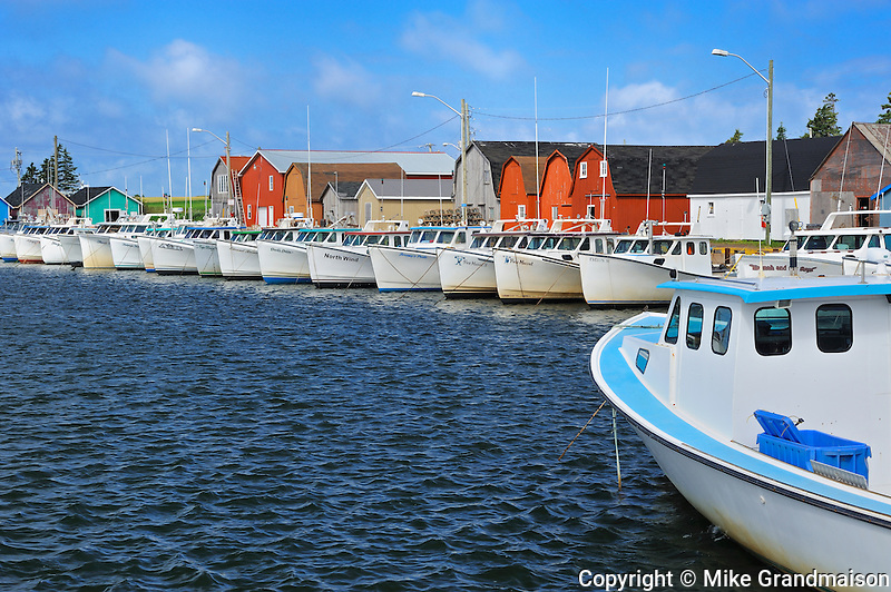 Fishing boats and sheds in coastal village of Malpeque Bay (Gulf of St. Lawrence
