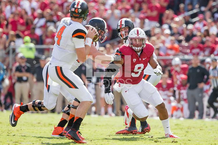 Stanford, CA -- October 25,2014:  Stanford plays Oregon State at Stanford Stadium.  Stanford defeated Oregon State 38-14.