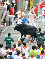 A participant is gored by a El Pilar fighting bulls during the sixth San Fermin Festival´s running of the bulls, on July 12, 2013, in Pamplona, Basque Country. On each day of the eight San Fermin festival days six bulls are released at 8:00 a.m. (0600 GMT) to run from their corral through the narrow, cobbled streets of the old navarre town over an 850-meter (yard) course. Ahead of them are the runners, who try to stay close to the bulls without falling over or being gored. (Ander Gillenea / Bostok Photo)