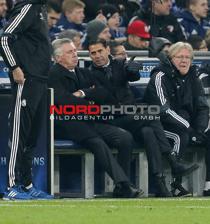 18.02.2015, Veltins-Arena, Gelsenkirchen, Championsleague, FC Schalke 04 vs. Real Madrid<br /> Trainer Carlo Ancelotti (Real Madrid), Co-Trainer Fernando Hierro (Real Madrid)<br /> Foto &copy; nordphoto /  Bratic