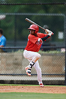 GCL Phillies East center fielder Julio Francisco (17) at bat during a game against the GCL Blue Jays on August 10, 2018 at Carpenter Complex in Clearwater, Florida.  GCL Blue Jays defeated GCL Phillies East 8-3.  (Mike Janes/Four Seam Images)
