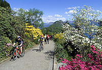 CHE, Schweiz, Tessin, Carona: Freizeit im Botanischen Park San Grato - Mountainbike fahren | CHE, Switzerland, Ticino, Carona: mountainbiking at Botanical Park San Grato