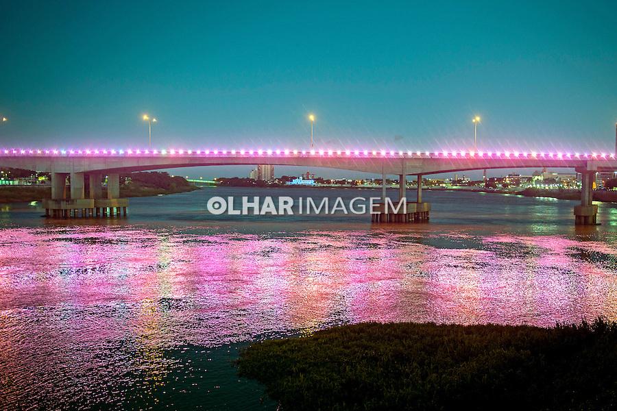 Cidade Campos dos Goytacazes e rio Paraíba do Sul. Rio de Janeiro. 2014. Foto de Luciana Whitaker.
