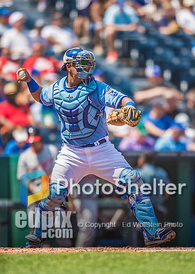 25 August 2013: Kansas City Royals catcher Salvador Perez in action against the Washington Nationals at Kauffman Stadium in Kansas City, MO. The Royals defeated the Nationals 6-4, to take the final game of their 3-game inter-league series. Mandatory Credit: Ed Wolfstein Photo *** RAW (NEF) Image File Available ***